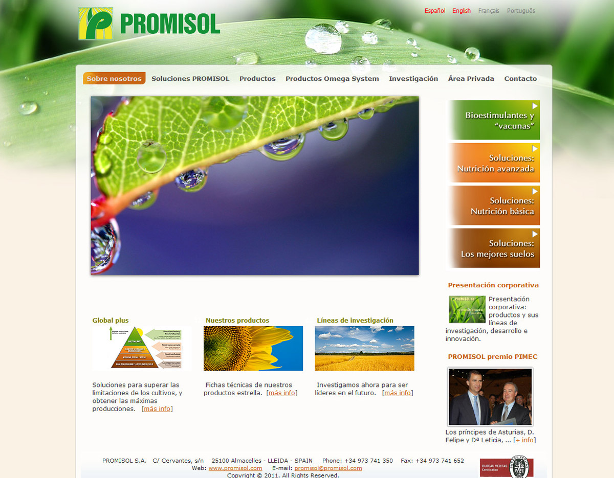 Dise o de p ginas web peque as empresas dise o web bajo for Paginas de jardineria